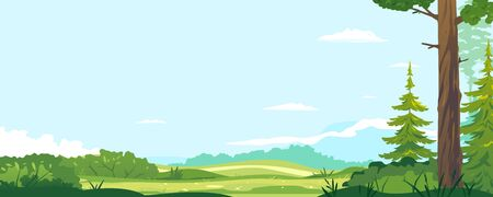 Green lawn with bushes in sunny day near spruce forest, Europe nature landscape background, hiking travel concept illustration background