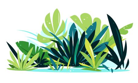 Decorative composition of different jungle plants on ground, group of green plants isolated, dense vegetation of the jungle  イラスト・ベクター素材