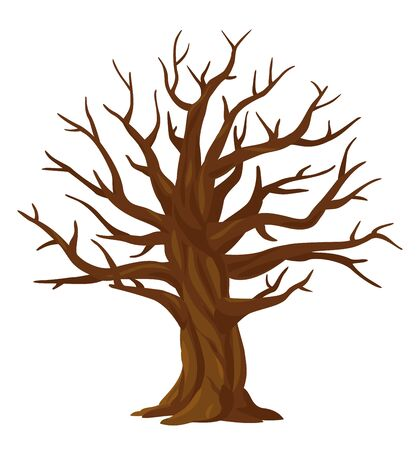 One wide massive old oak tree without leaves isolated illustration, majestic oak without foliage with a rough trunk and big crown, mystical brown tree