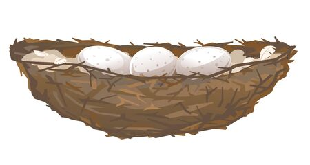 One brown bird nest with three eggs in side view from small branches isolated, small nest of thin branches and feathers