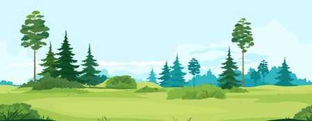 Path along green valley with spruce and pine trees tillable horizontally, tourist route near spruce forest and bushes in summer sunny day, nature outdoor game background