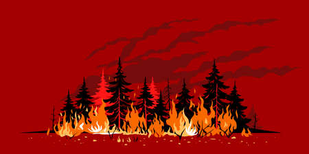 Burning forest spruces in fire flames poster concept illustration on red background, nature disaster concept illustration background, poster danger, careful with fires in the woods