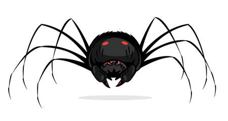 One big black cartoon scary spider with red evil eyes, spider in front view with red spots on abdomen and big cheliceraes isolated illustration