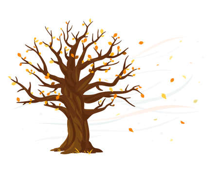 Autumn leaves fall from one wide massive old oak tree isolated illustration, majestic oak with a rough trunk and big crown, wind tears leaves from tree