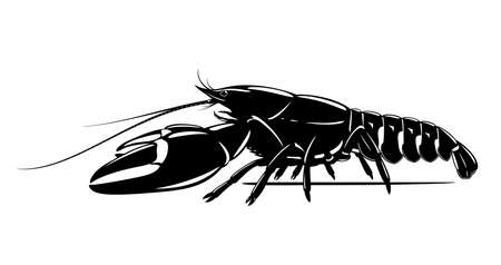 Realistic signal crayfish black and white isolated illustration, one big freshwater North American crayfish on side view, Europe invasive species Иллюстрация