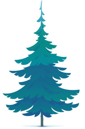 One tiny spruce tree illustration, white spruce evergreen coniferous tree in side view isolated Иллюстрация