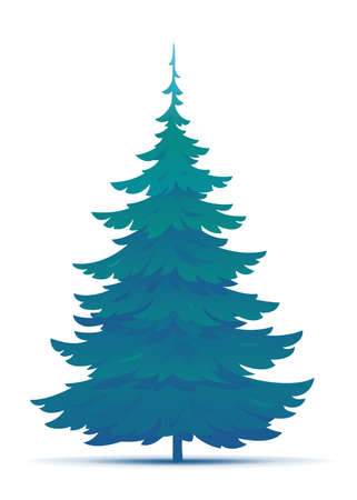 One tall spruce tree illustration, European spruce evergreen coniferous tree in side view isolated Иллюстрация