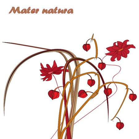 The nature of mother