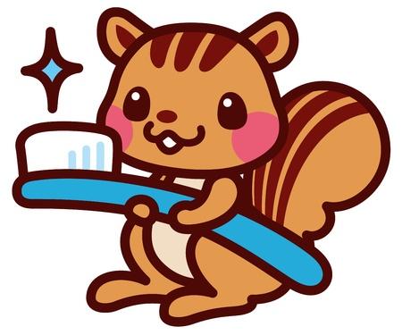 ardilla: Ardilla con un cepillo de dientes