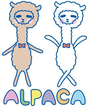 funny alpaca Illustration