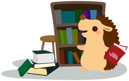 Hedgehog to organize the bookshelf Illustration