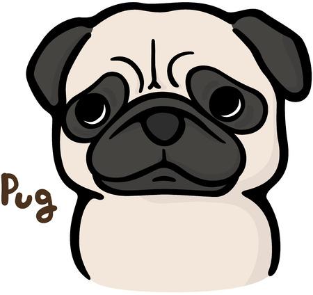 Pug (dog)