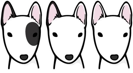 bull terrier: Bull Terrier (dog)