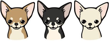 Chihuahua (dog) Illustration