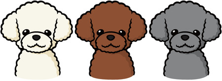 Toy Poodle (dog) 矢量图像