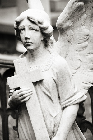 Angel in graveyard
