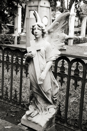 Angel in graveyard photo