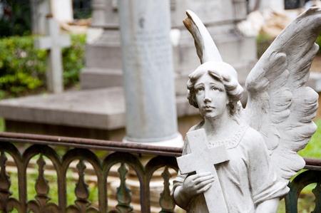 Angel in graveyard photo