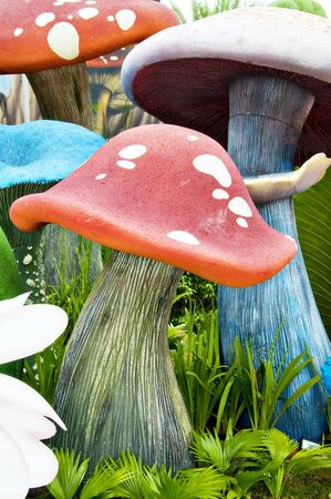 fairy toadstool: The garden of mushroom