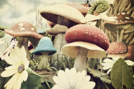 funghi: Giardino con texture grunge