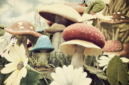 fairy toadstool: Grunge Textured Garden  Stock Photo