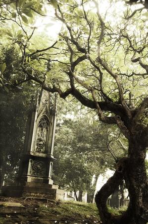 Scary graveyard  Stock Photo