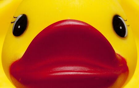 duckie: Duckie close-up Stock Photo