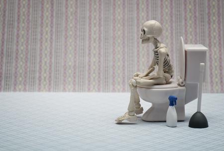 skeleton toilet