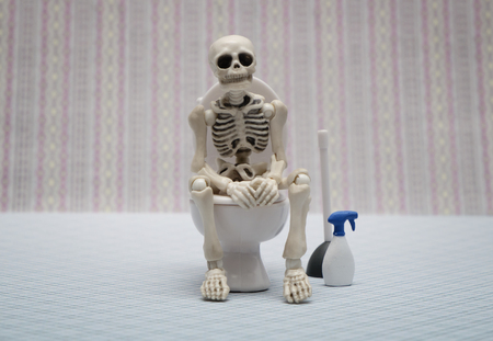 scheletro umano: scheletro di toilette