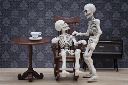 adult bones: skeleton talk