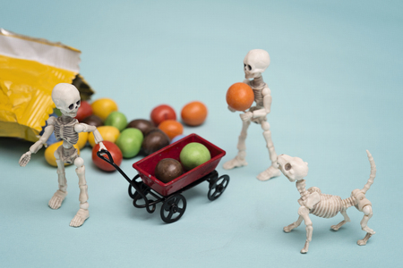 Two skeleton kids and skeleton dog getting chocolate candy