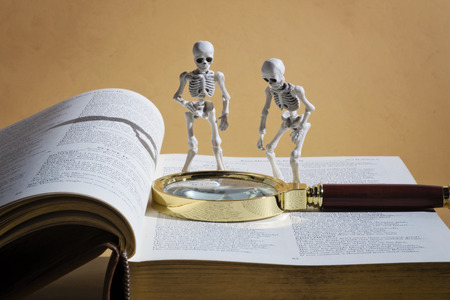 two skeletons and a thick book Stock Photo