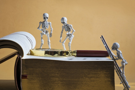 three skeletons and a thick book