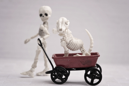Skeleton child pulling dog in his wagon