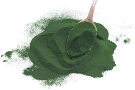 Algae powder on white