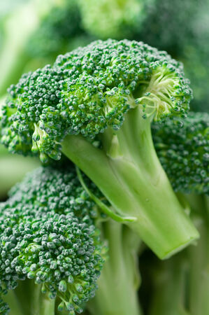 florets: Fresh raw broccoli florets Stock Photo