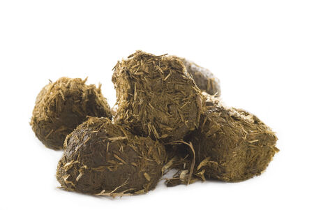dung: Heap of horse dung with hay straws on white background.