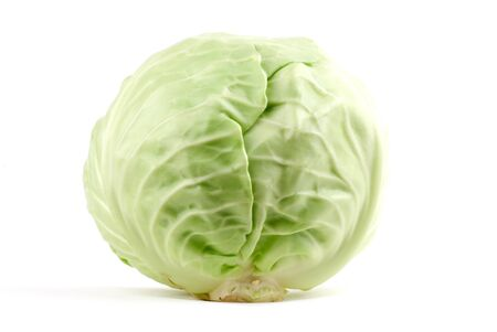 White cabbage head close up.