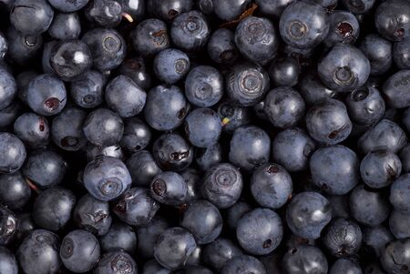 full frames: Fresh organic blueberries. Stock Photo