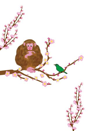plum tree: Monkey and a plum tree with postcards Stock Photo