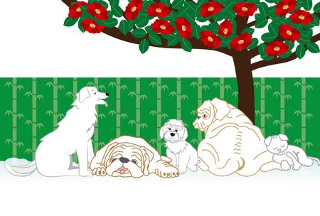 犬と猫と椿の花のメッセージ カードを開く 写真素材