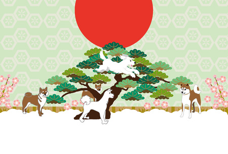 Shiba Inu, Sunrise, pine and plum flower postcards cards material