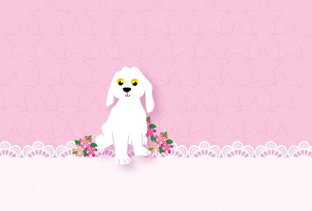 Cute little white dog with flower and lace with pink greeting cards 写真素材