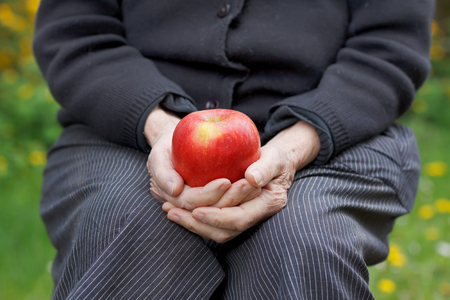 aiding: Healthy elderly woman holding a red apple in her wrinkled hand Stock Photo