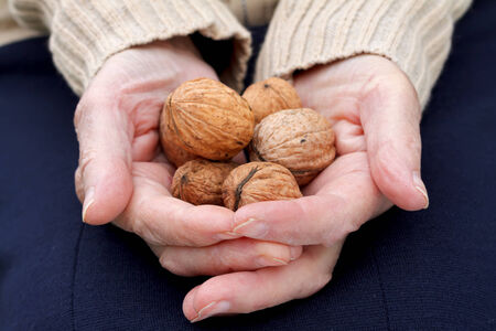 Close up of an elderly hand holding walnuts photo