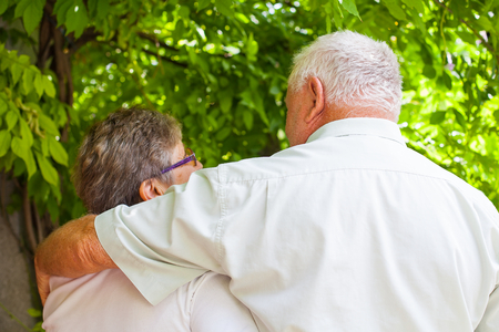 Cute hugging elderly couple in love walking in the park on a summer day, back view