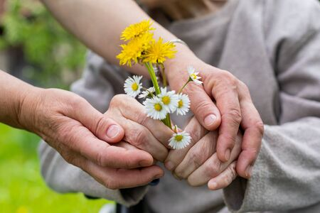 Close up picture of elderly woman with dementia holding flower bouquet given by caretaker - hands Standard-Bild
