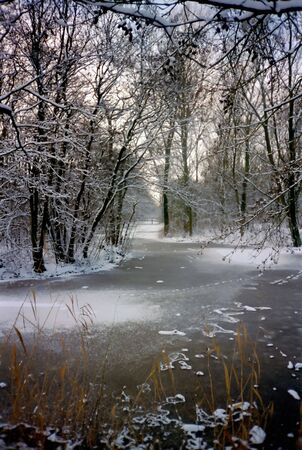Frozen ditch in a snowy park photo