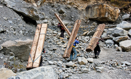 Nepalese people carry heavy wood for construction in Himalayas