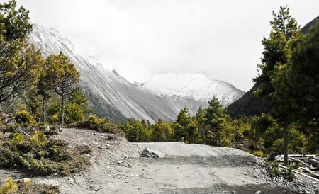 Trail in Annapurna / Himalaya Stock fotó